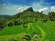how-to-visit-bukit-jambul-bali-in-karangasem