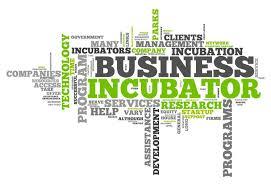inkubator bisnis